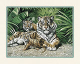 Yellow Tigers with Cubs Prints by Gary Ampel