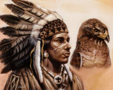 Young Hawk Art by Gary Ampel