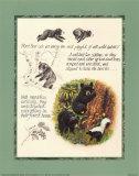 Estudio del oso Pósters por Michelle Mara