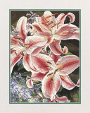 Lilacs and Lilies Prints by Linscott