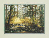 Serene Woods Prints by  Durgin