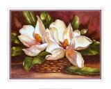 Magnolias in Basket Affiche par Peggy Thatch Sibley