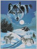 Loup hurlant Affiche par Gary Ampel