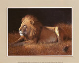 Majestic Lion Art by W. Michael Frye