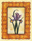 Iris Print by Richard Henson