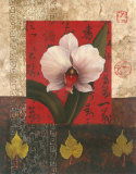 White Chinese Orchid Art by T. C. Chiu