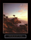 Dedication: Lone Cypress Print