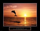Goals: Dolphins Print van Craig Tuttle