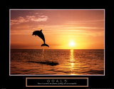 Goals: Dolphins Print by Craig Tuttle
