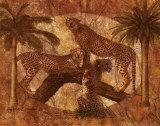 Jungle Cheetahs Posters by Jonnie Chardonn