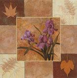 Lavender Iris Art by T. C. Chiu
