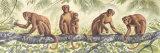 Hora del mono II Póster