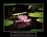 Consistency: Pond Flower Affiche par Jerry Angelica