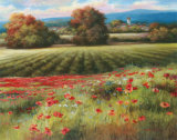 Fields of Provence II Posters by T. C. Chiu