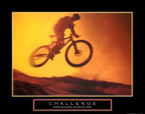 Challenge: Mountain Bike Affiches