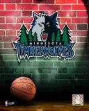 Minnesota Timberwolves Photo