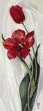 Two Red Tulips Poster by Maya Nishiyama