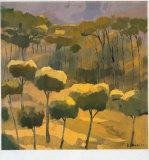El Pinar Prints by Jesus Barranco