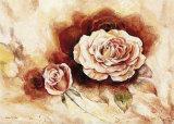 Rose Shadow I Art by Karin Valk