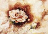 Rose Shadow II Poster von Karin Valk