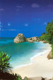 Tropical Beach Plakat