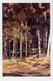 Bosque I Posters by Jesus Barranco