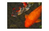 Green Rock Japanese Koi II Giclee Print by  erichan