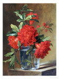 Red Carnations and a Sprig of Berries in a Glass on a Ledge Premium Giclee Print by Gerard Van Spaendonck