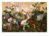 Fairies Round a Bird's Nest, the Distressed Mother Print by John Anster Fitzgerald