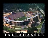 Florida State - Tallahassee, FL Poster af Brad Geller