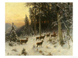Deer in Winter Wooded Landscape Giclee Print by Arthur Julius Thiele