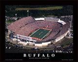 Buffalo Bills Poster von Brad Geller