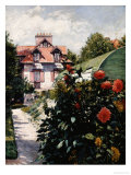 Dahlias, Petit Gennevilliers Garden Giclee Print by Gustave Caillebotte