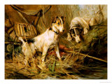 Two Smooth-Haired Fox Terriers by a Fishing Rod and a Creel on a Riverbank Giclee Print by Philip Eustace Stretton