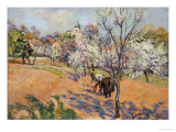 Two Peasants Sowing Haricots in an Orchard in Blossom Posters by Armand Guillaumin
