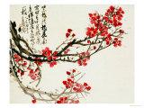 Fleurs de prunier Affiches par Wu Changshuo