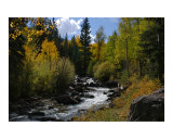 Bilk Creek, Colorado Photographic Print by Susan McKinney