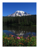 Mt. Rainier's Garden Photographic Print by Harley Lever
