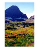 Logan's Pass- Glacier National Park, Montana Photographic Print by Nancy Suzanne Mueller