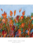 Color Fields II Prints by Gary Max Collins