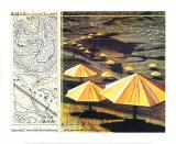 Christo - The Yellow Umbrellas II Obrazy