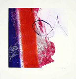 Paradigm Limited Edition by Heidi Koenig