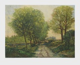 The Avenue Collectable Print by Alfred Sisley