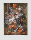Flowers I Collectable Print by Jan van Huysum