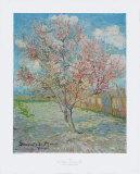 Souvenir de Mauve Collectable Print by Vincent van Gogh