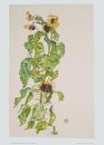 Sonnenblumen, 1917 Poster von Egon Schiele