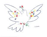 Colomba con fiori Poster di Pablo Picasso