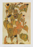 Sunflowers, 1911 Prints by Egon Schiele