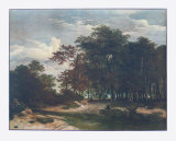 The Heart of the Forest Collectable Print by Jacob van Ruisdael