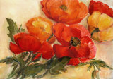 Splendid Poppies Prints by Elisabeth Krobs